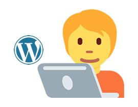 stm - Hire WordPress Team